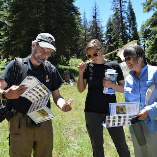 Three people consult brochures while standing in an outdoor setting. One woman is holding a butterfly net.