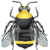 A stylized but very detailed and accurate image of a bumble bee is shown (sampled from our ID guides).