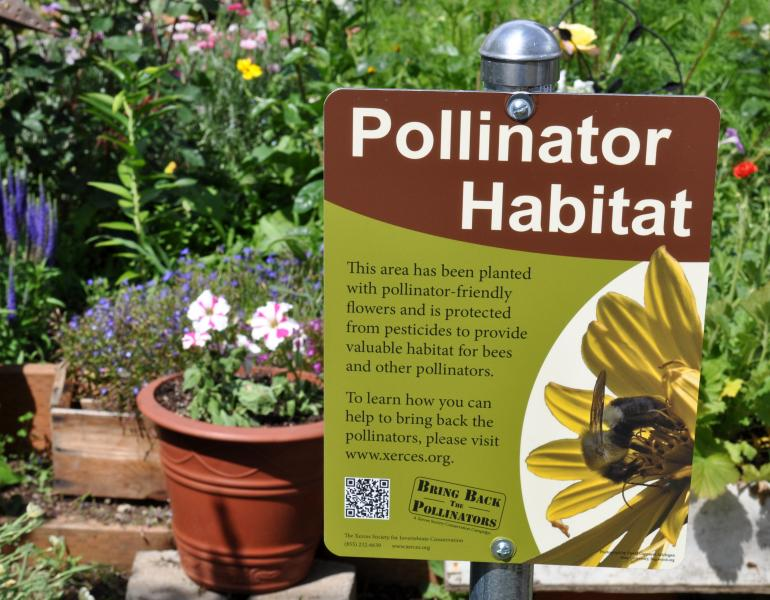 A Xerces Society Pollinator Habitat sign stands proudly among a blossoming garden.