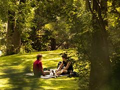 Pollinator Friendly Parks & Greenspaces
