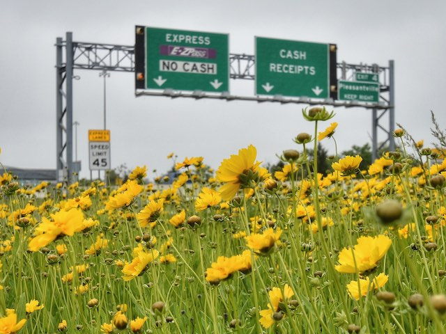 Roadsides & Rights-of-Way