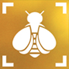 The Bumble Bee Watch logo, which depicts a stylized bee centered in a frame, is shown.