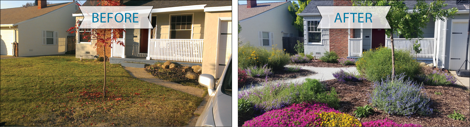 "This two-panel image shows the same house twice. In the left image, labeled ""Before,"" a lawn and one small, scraggly tree comprise the front yard. In the right image, labeled ""After,"" the yard is bursting with a variety of flowering plants, there is a winding path through the landscape, the tree looks healthier, and there are open patches of rich, brown dirt."