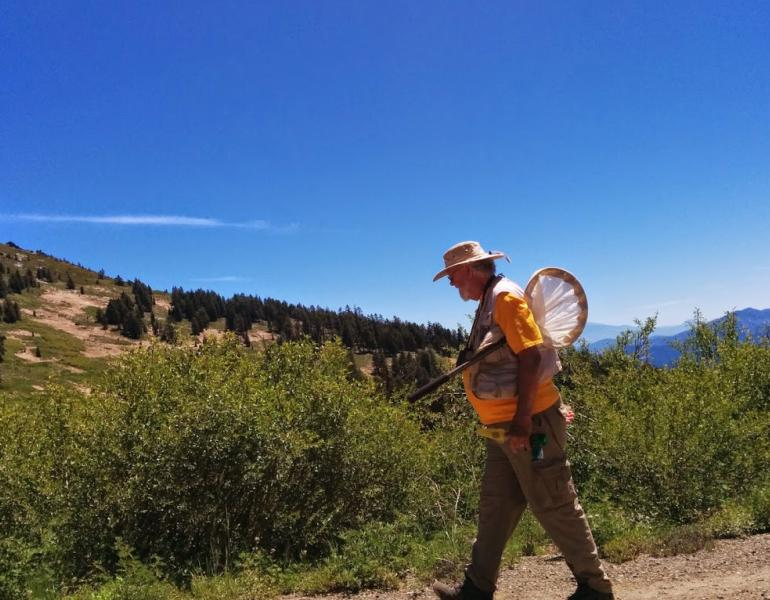 Robbin Thorp, wearing an orange shirt and tan pants and a tan hat, carries a net as he walks through the hills of southern Oregon.