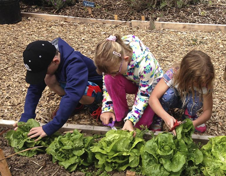 Children tend plantings in a raised bed.