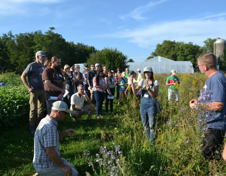 A group of farmers stand between a crop field and flowering meadow listening to a presenter speaking about how to plan habitat for insects.