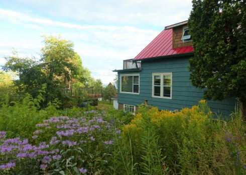 A teal-colored house is seemingly dwarfed by a profusion of plants growing around it, including purple and yellow blooms.